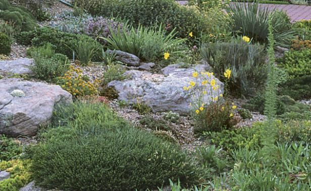 Rock garden primer finegardening for Landscaping rocks and plants