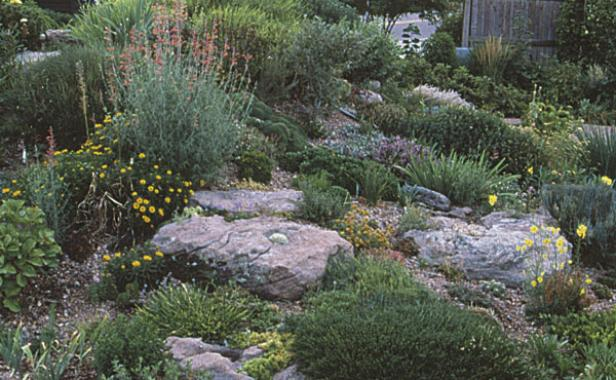 Since Rock Garden Plants Require Good Drainage The Author Made Her Own Slope