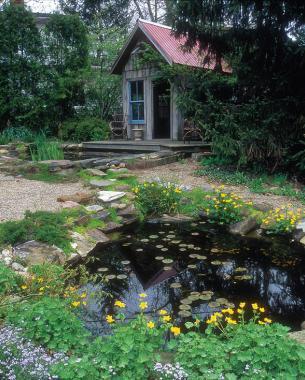 Cottage Garden With A Twist Finegardening
