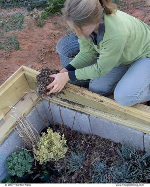 4 Ways To Use A Cold Frame Finegardening