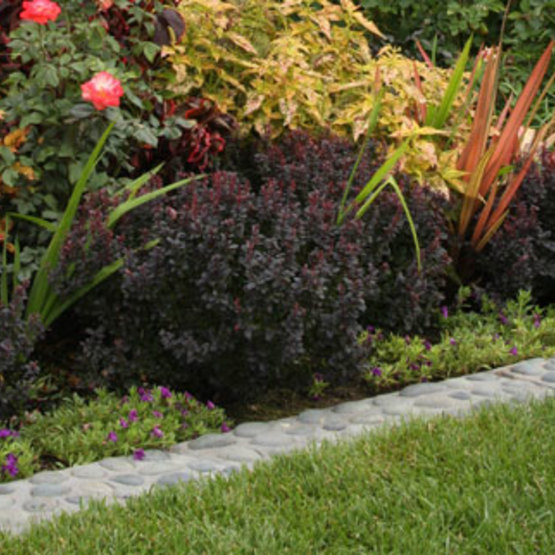 If Your Garden Needs A Boost, Perhaps Itu0027s Time To Rethink Your Edges.  Installing New Edging Is One Of The Easiest, Fastest Ways To Improve The  Overall ...
