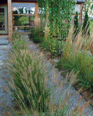 Designing with grasses finegardening workwithnaturefo