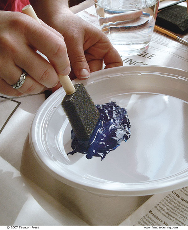 Put The Paint For The Base Coat On A Plastic Plate And Thin It With A Small  Amount Of Water.