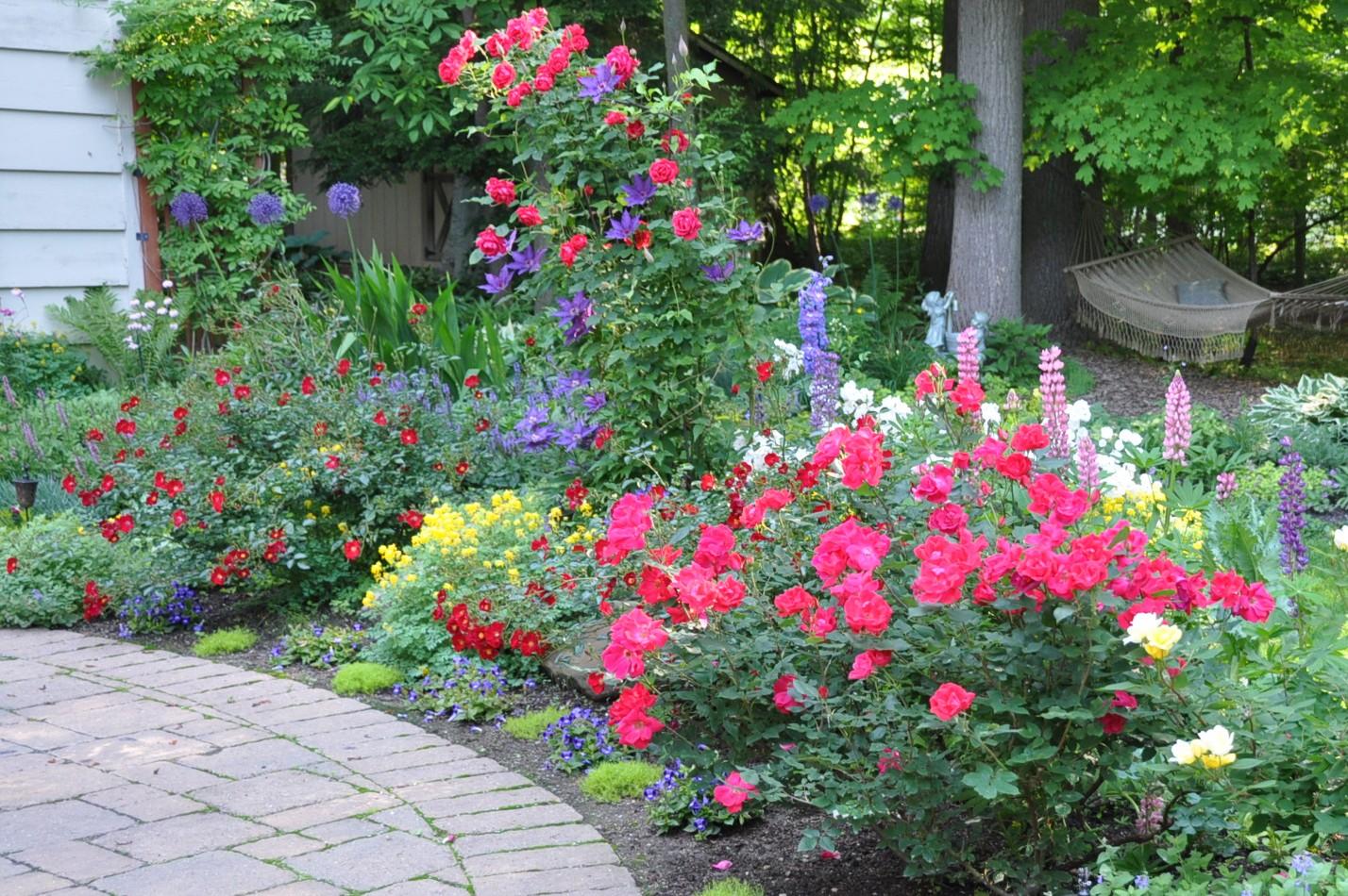 Color In Danielas Garden Ohio