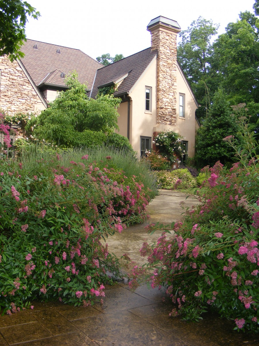 Darryl\'s Garden in Tennessee, from Jeff - FineGardening