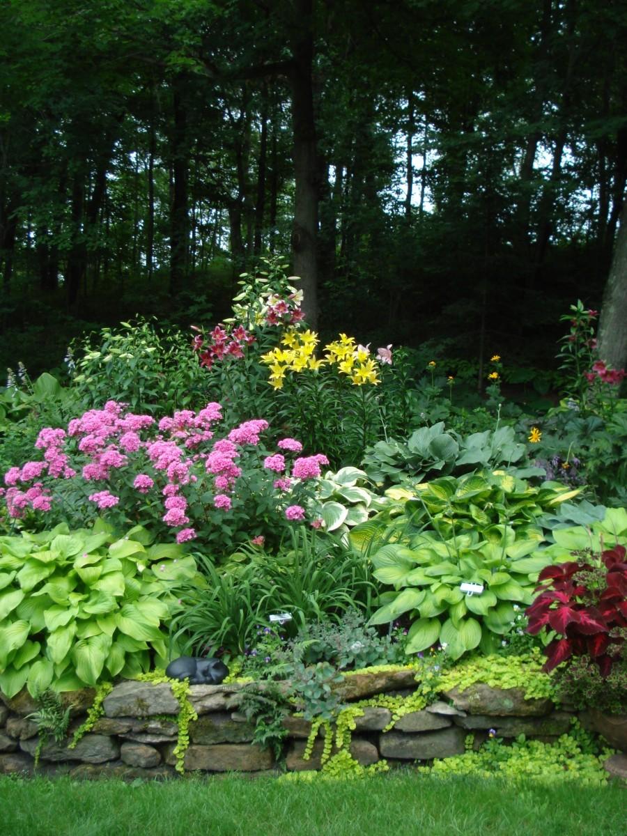 Superbe Fine Gardening Magazine