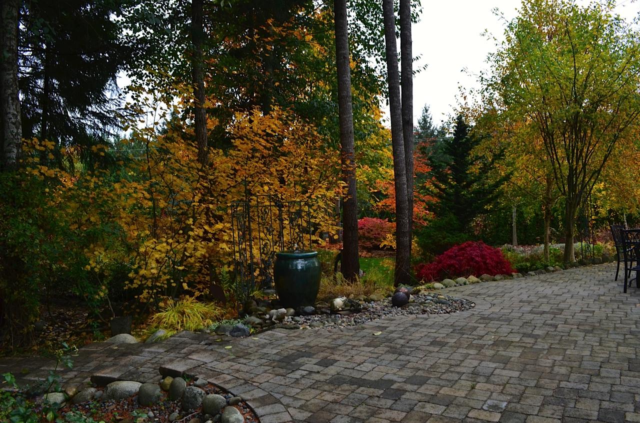 Stella\'s garden on Vancouver Island, Day 1 - FineGardening