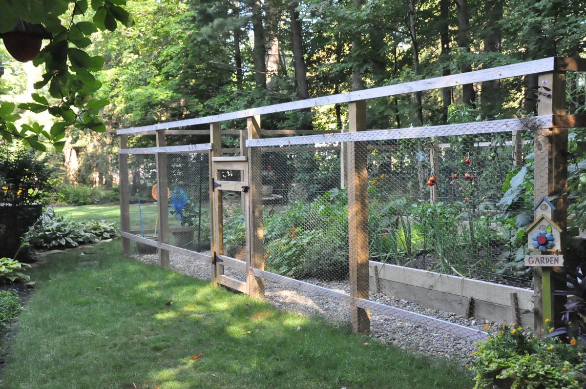 Daniela\'s newly fenced veggie garden in Ohio (12 photos) - FineGardening