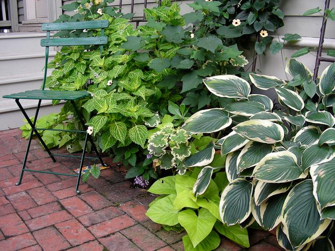 Tips for Selling Your Garden (er, Home) Part 1 - FineGardening