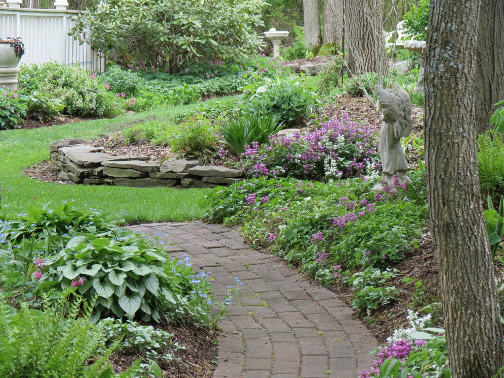 May in Terie\'s garden in New York - FineGardening