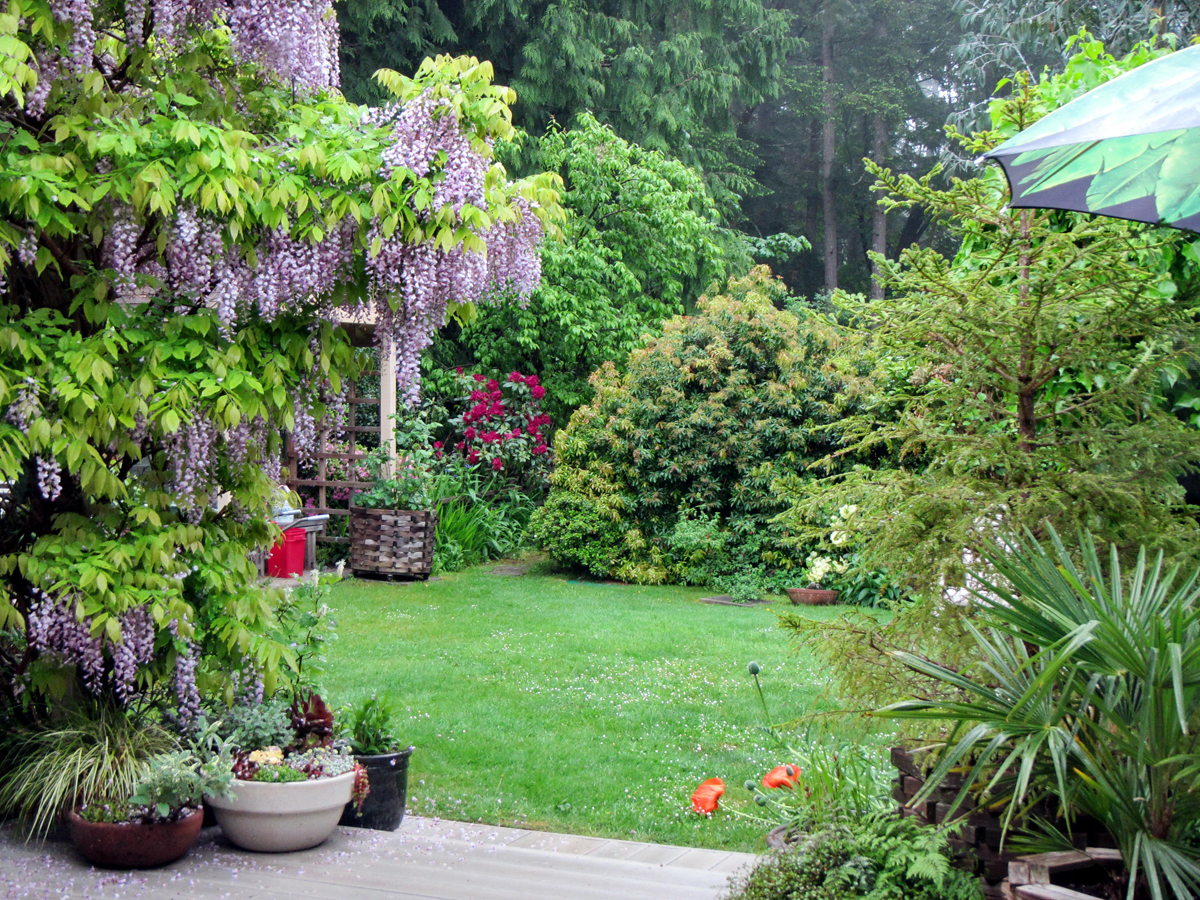 Mays Garden: May's Garden On Vancouver Island In British Columbia