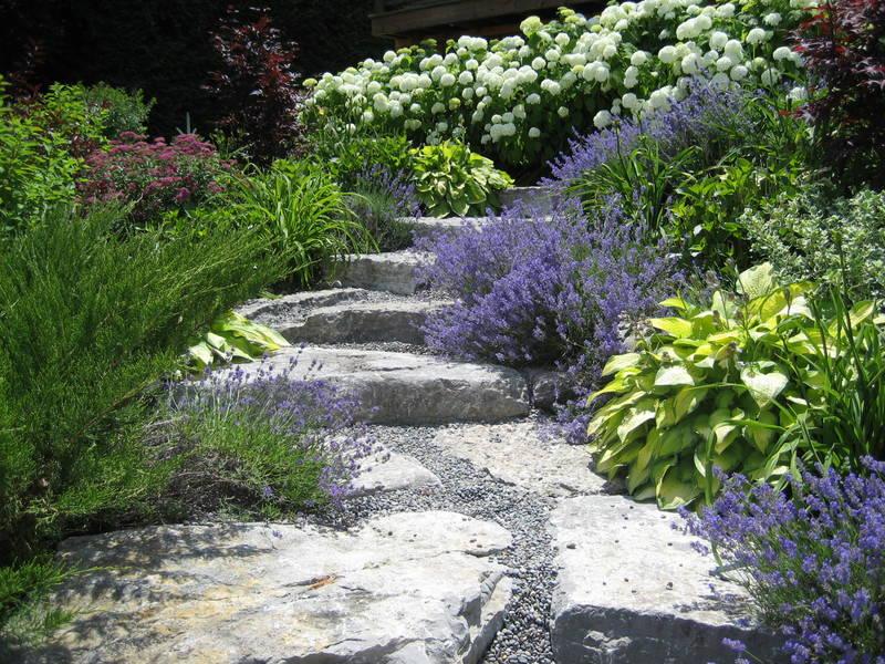 Sunny\'s hillside garden in Ontario - FineGardening