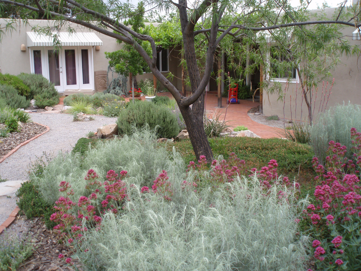 Hunter's design in New Mexico - FineGardening on living room design, simple small house design, landscape design, small gift store design, small vertical gardening, small cottage interior design, small treatment room design, small bbq area design, small wall design ideas, small atrium design, small private gardens, small space gardening, small animal shelter design, small gazebo design, small fall gardens, small wooden gate design, small backyard with beach entry pool, small yard design, small flower gardens, small courtyard gardens,
