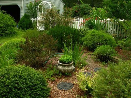Kate\'s garden in New Jersey, Day 1: The Shrub Garden - FineGardening
