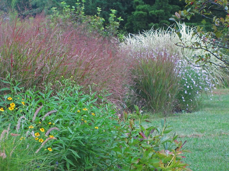 Revisiting John\'s garden in New Jersey - FineGardening