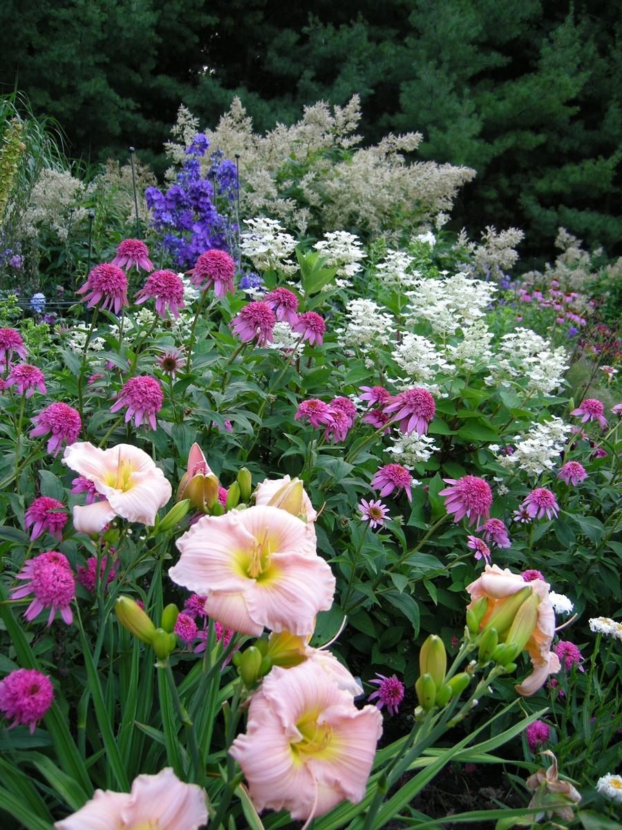 Lorraine\'s from-scratch garden in Ontario - FineGardening