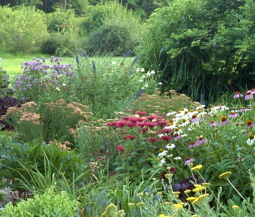 READER PHOTOS! Carla\'s cottage garden in Connecticut, revisited ...