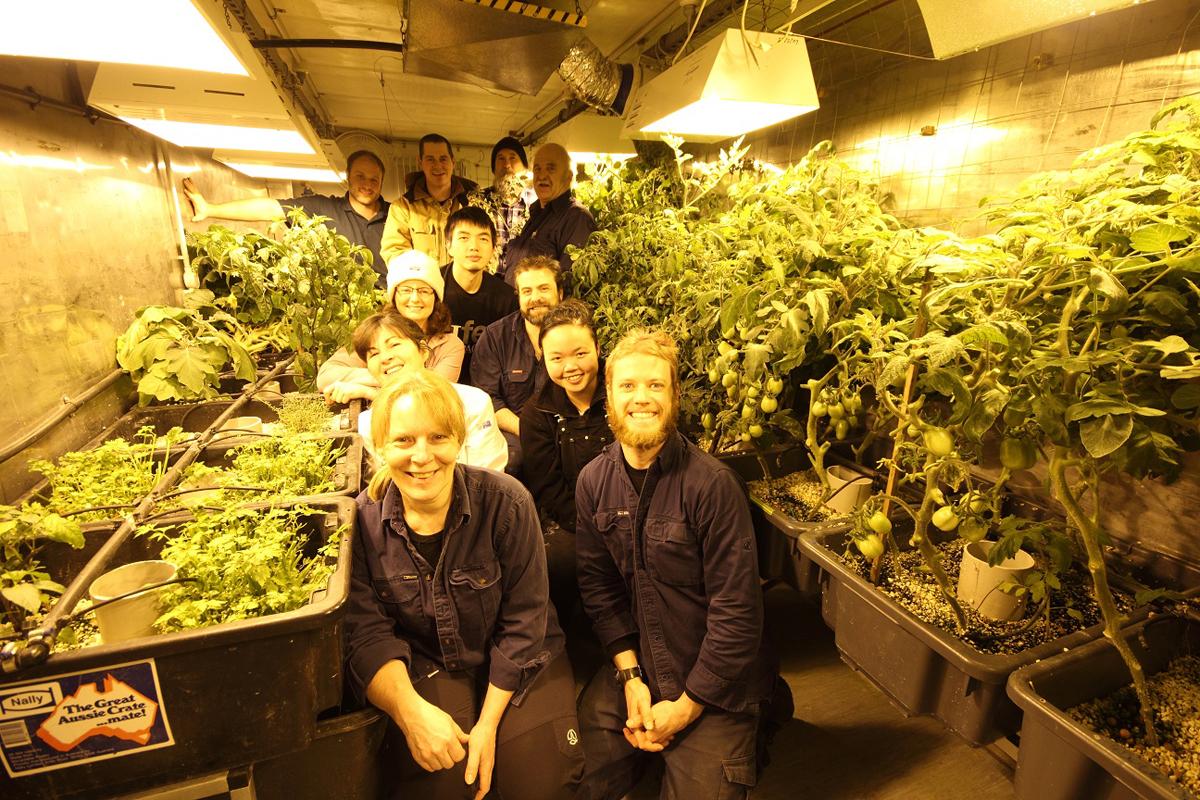 Darryl\'s garden in Antarctica - FineGardening
