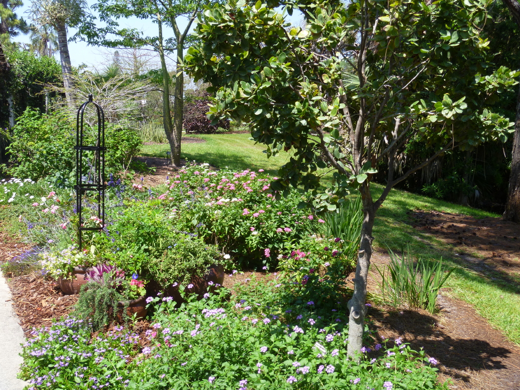 Reader photos a cottage garden in southern florida for Prairie style garden design