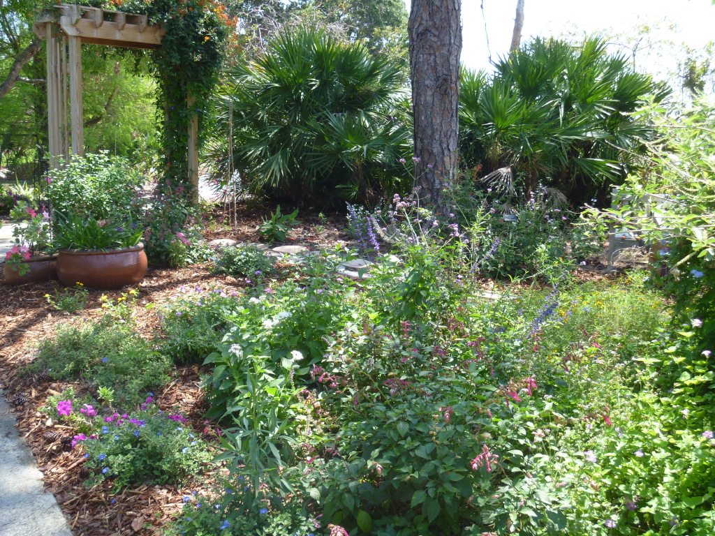 READER PHOTOS! A cottage garden in southern Florida - FineGardening