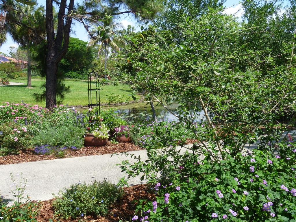 READER PHOTOS! A cottage garden in southern Florida - FineGardening