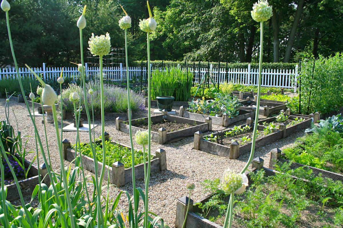 Reader Photos Amys Garden In Ohio Finegardening