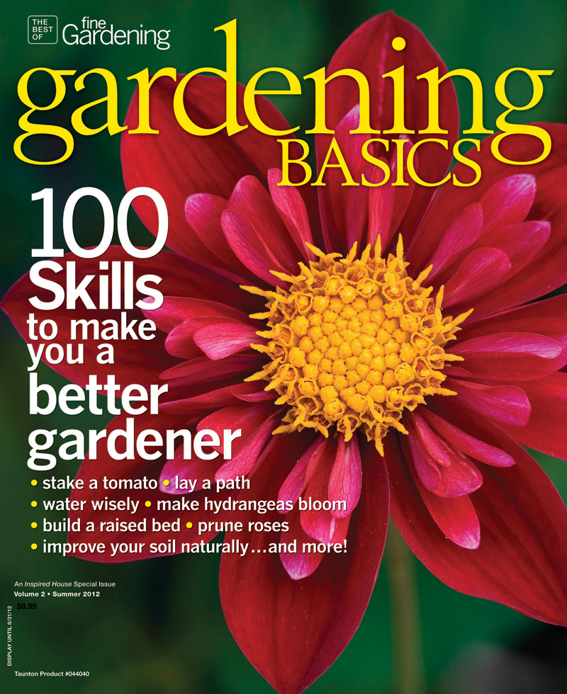 Skills That Will Make You A Better Gardener