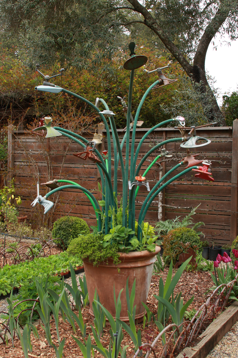 Year-round focal points from humble materials, Day 2 - FineGardening