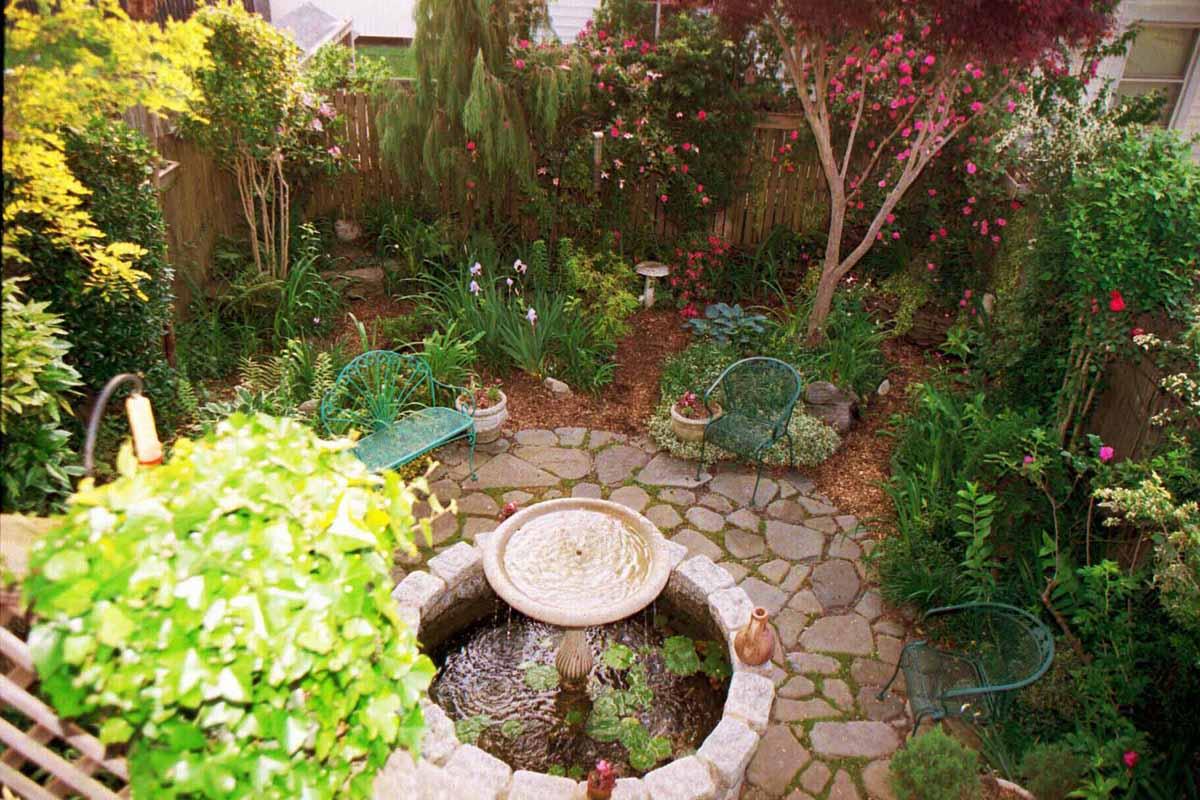 READER PHOTOS! Marc\'s garden in Maryland - FineGardening
