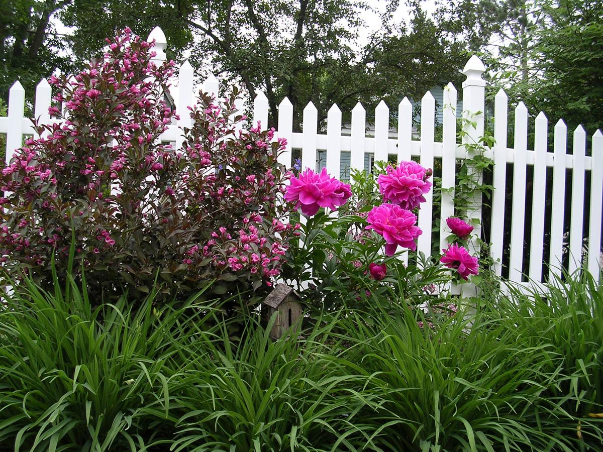 Barbu0027s Garden In Wisconsin. U0027