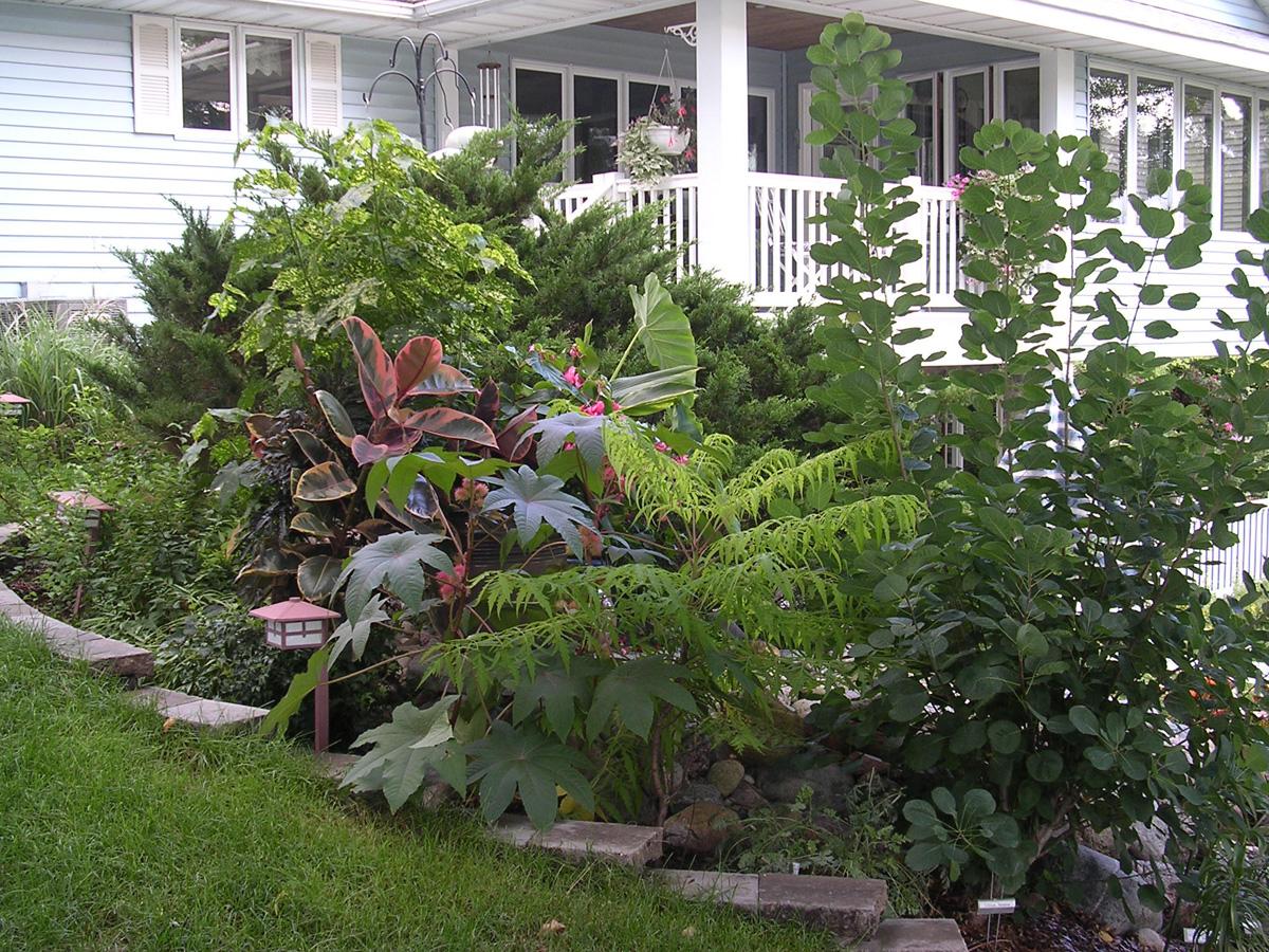 Barbu0027s Garden In Wisconsin   FineGardening