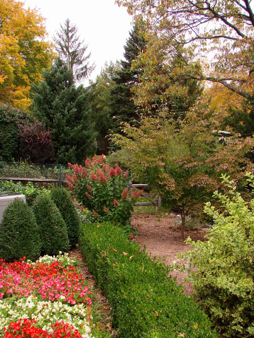 READER PHOTO! Clare\'s garden in New Jersey - FineGardening