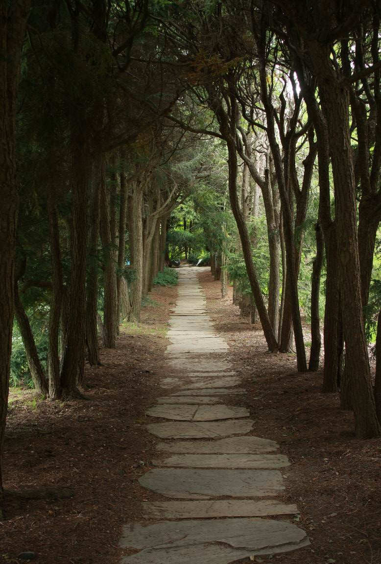 The Ghost Walk - FineGardening