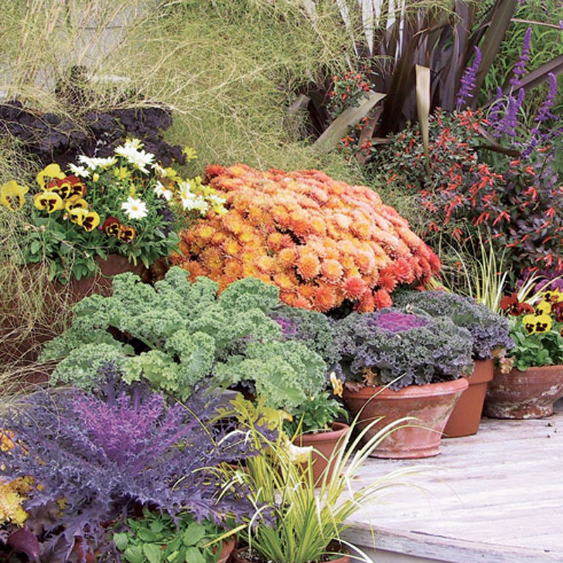 A Gardener\'s Checklist for Early Fall - FineGardening