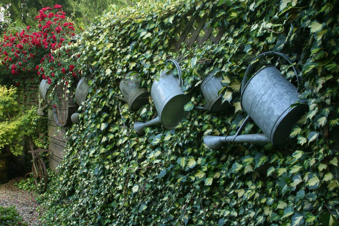 Watering Cans As Garden Ornaments