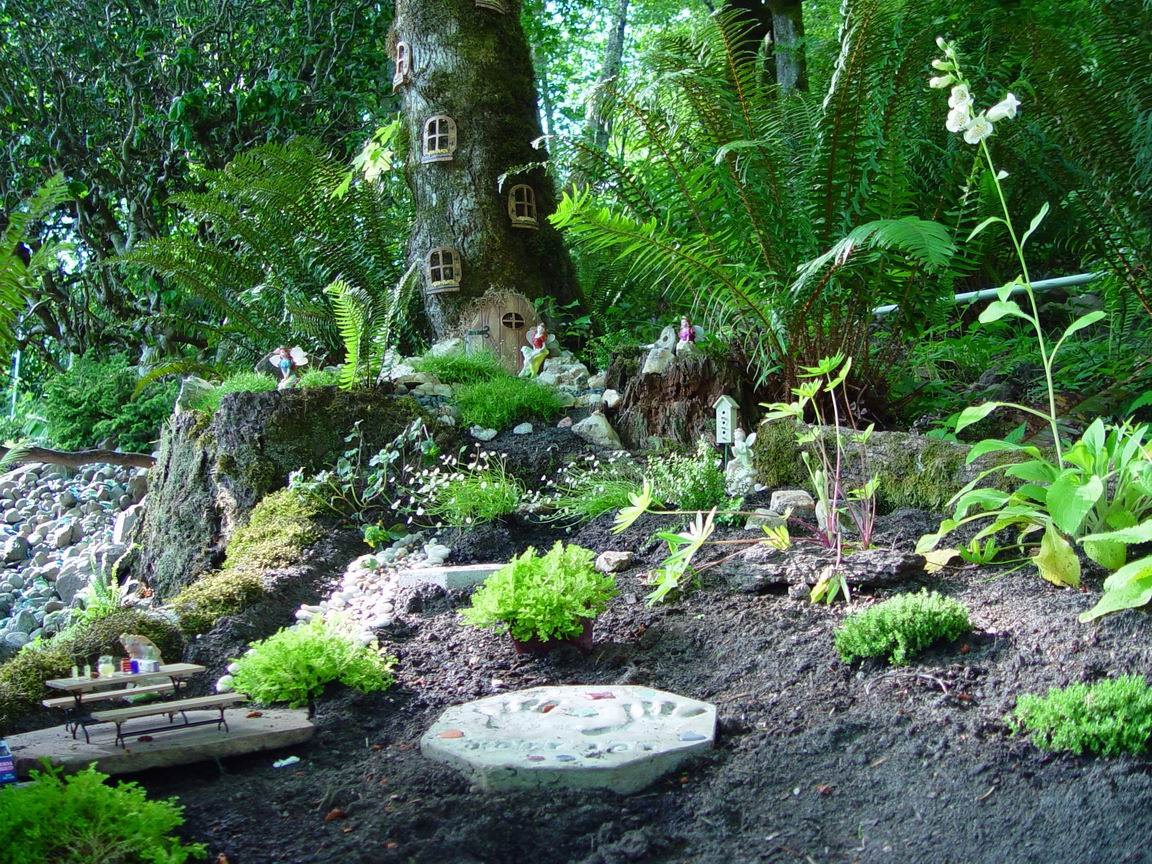 Fairy Gardens In The Land Ofu2026Washington