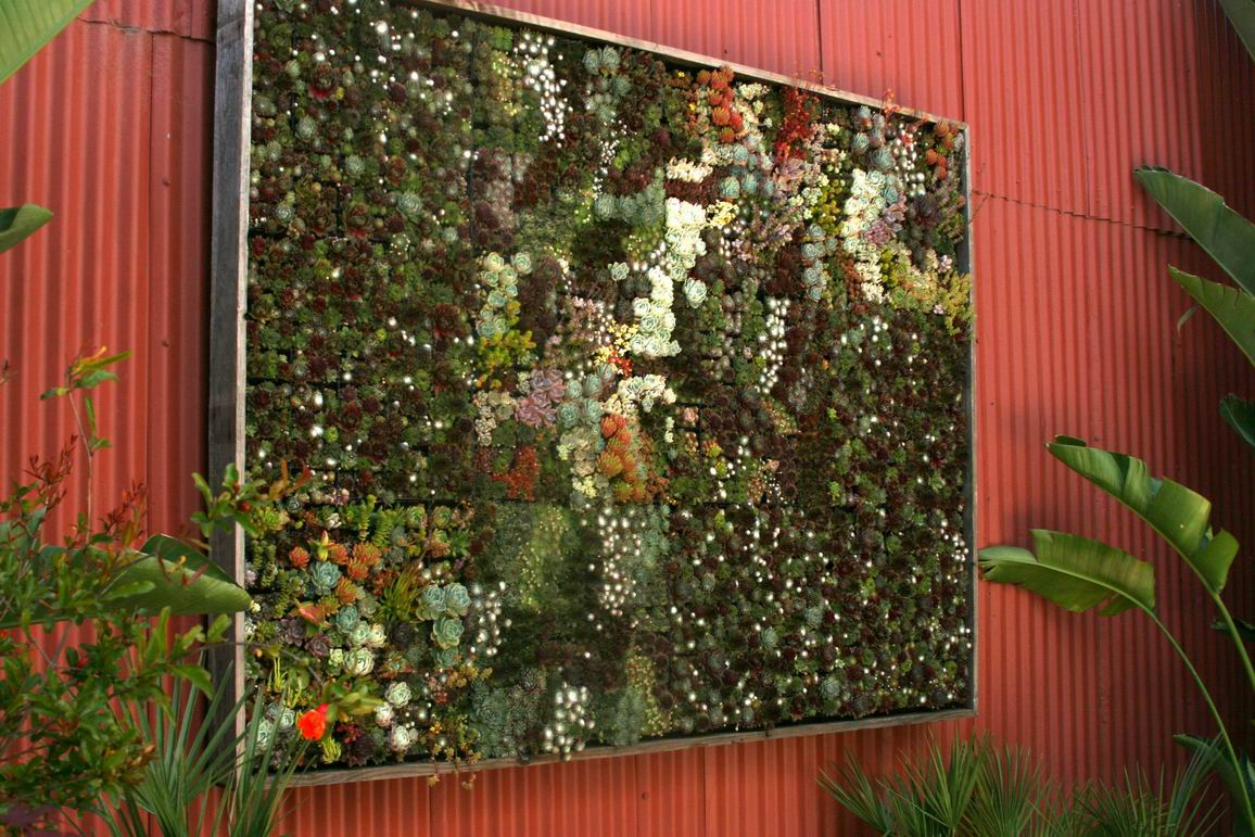 Running out of room for plants? - FineGardening