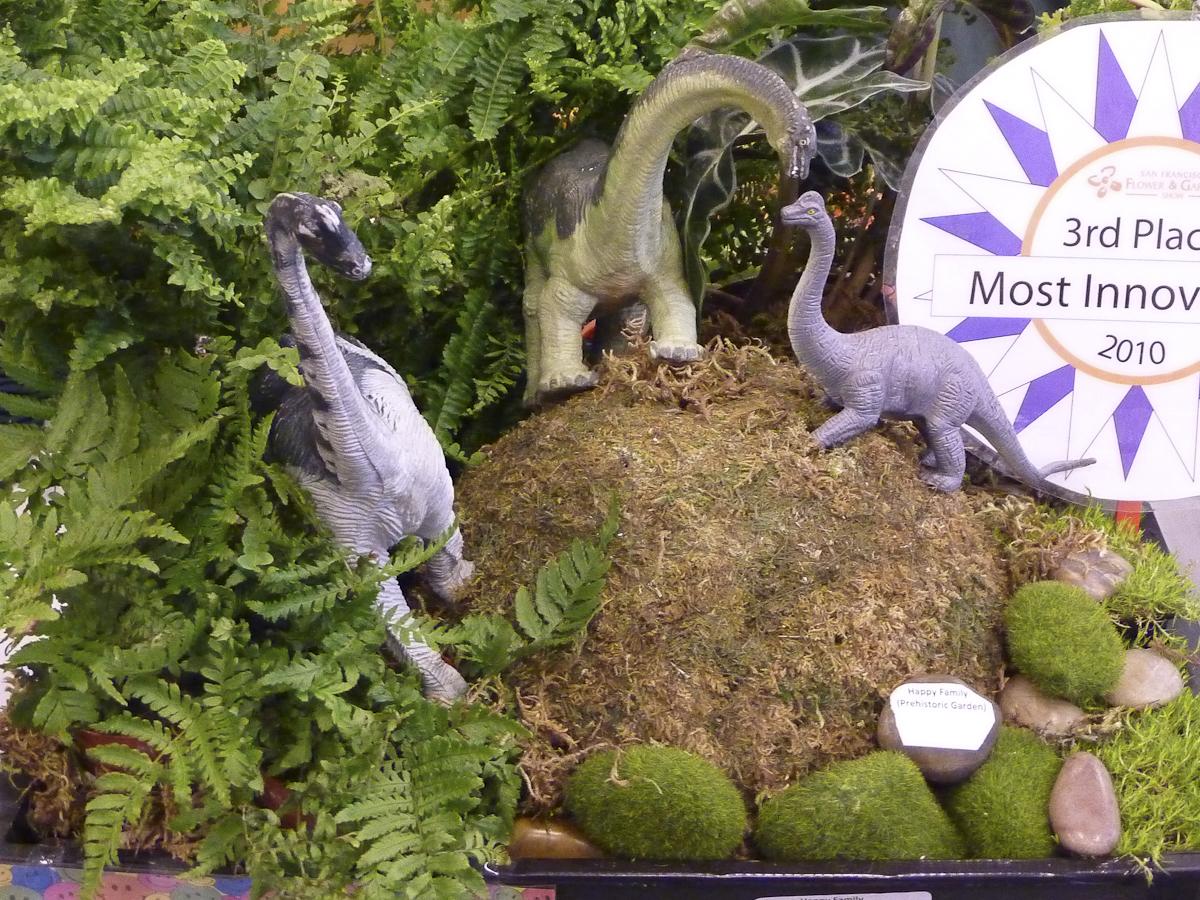 In A Dinosaur\'s Garden - FineGardening