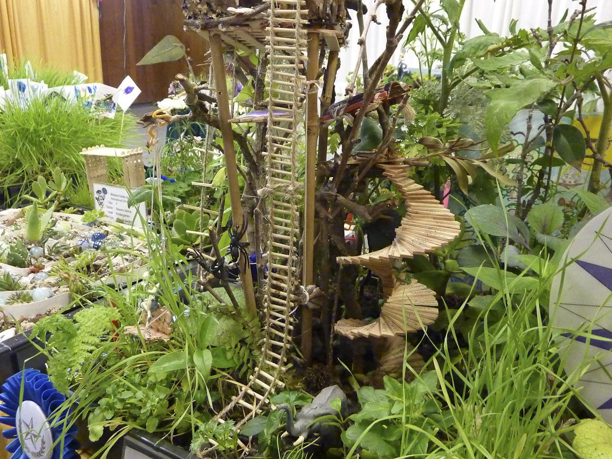 In A Dinosaur S Garden Finegardening