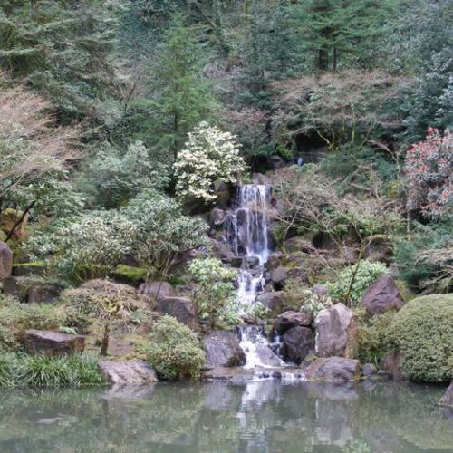 Part i when the well runs dry finegardening - Portland japanese garden free day ...