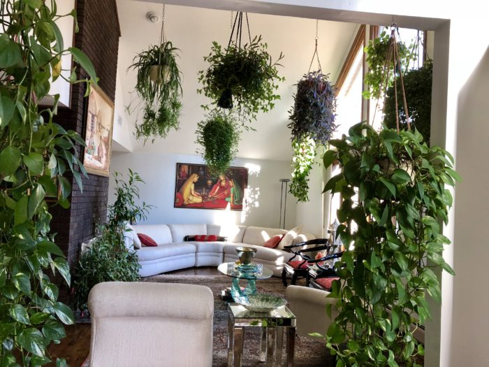 The Hanging Gardens Of New Jersey Finegardening