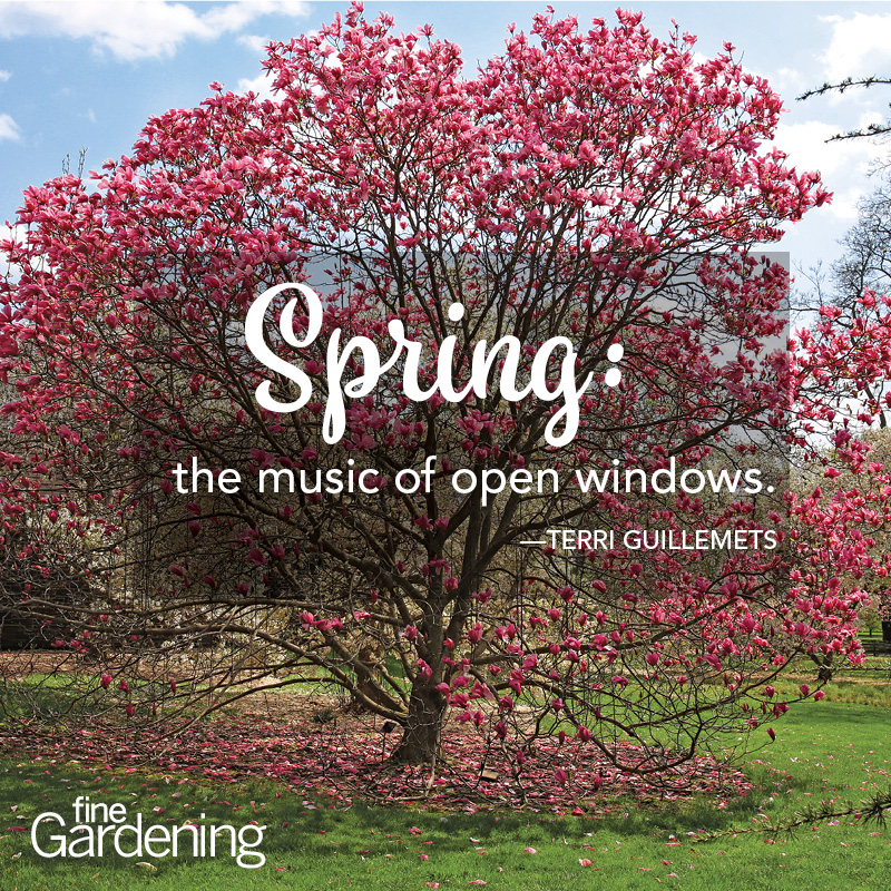 Ten of the best spring quotes finegardening spring has returned the earth is like a child that knows poems rainer maria rilke mightylinksfo