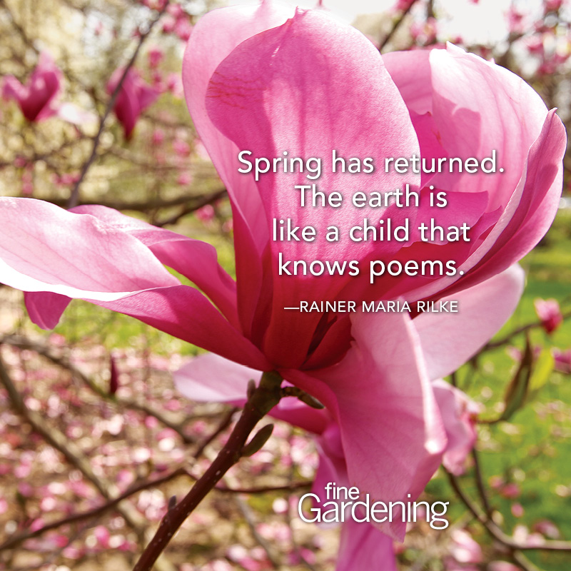Ten Of The Best Spring Quotes