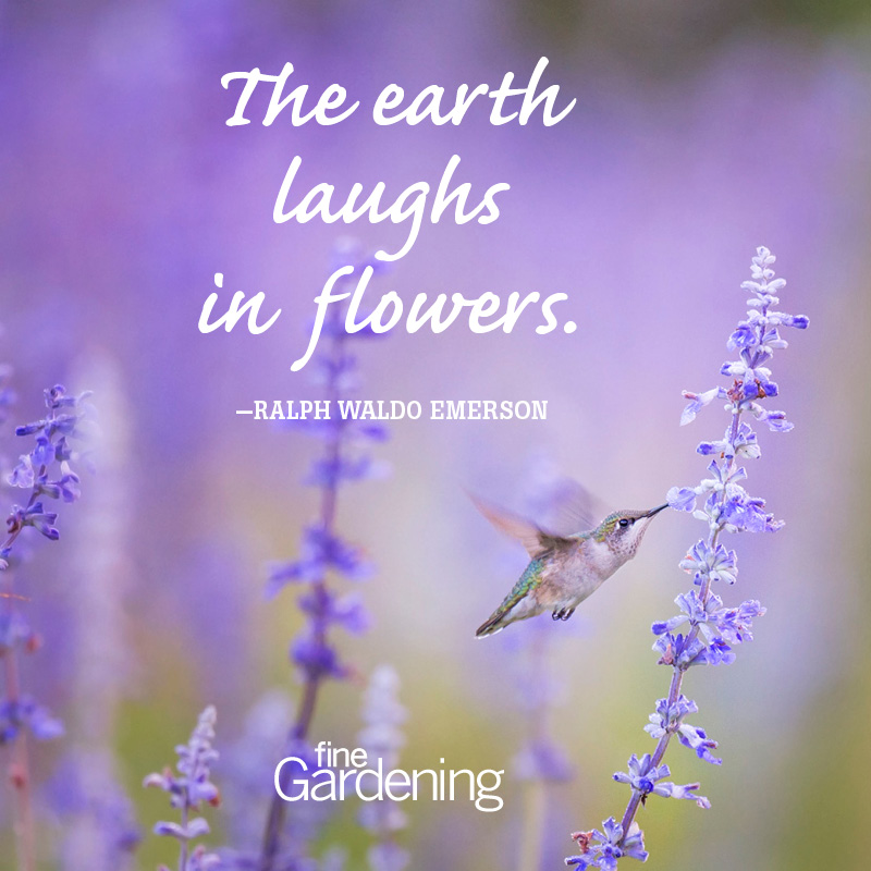 Ten of the best spring quotes finegardening the earth laughs in flowers ralph waldo emerson mightylinksfo