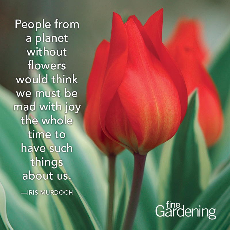 Ten of the best spring quotes finegardening people from a planet without flowers would think we must be mad with joy the whole time to have such things about us mightylinksfo