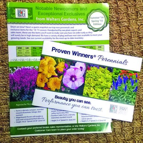 marketing the plant