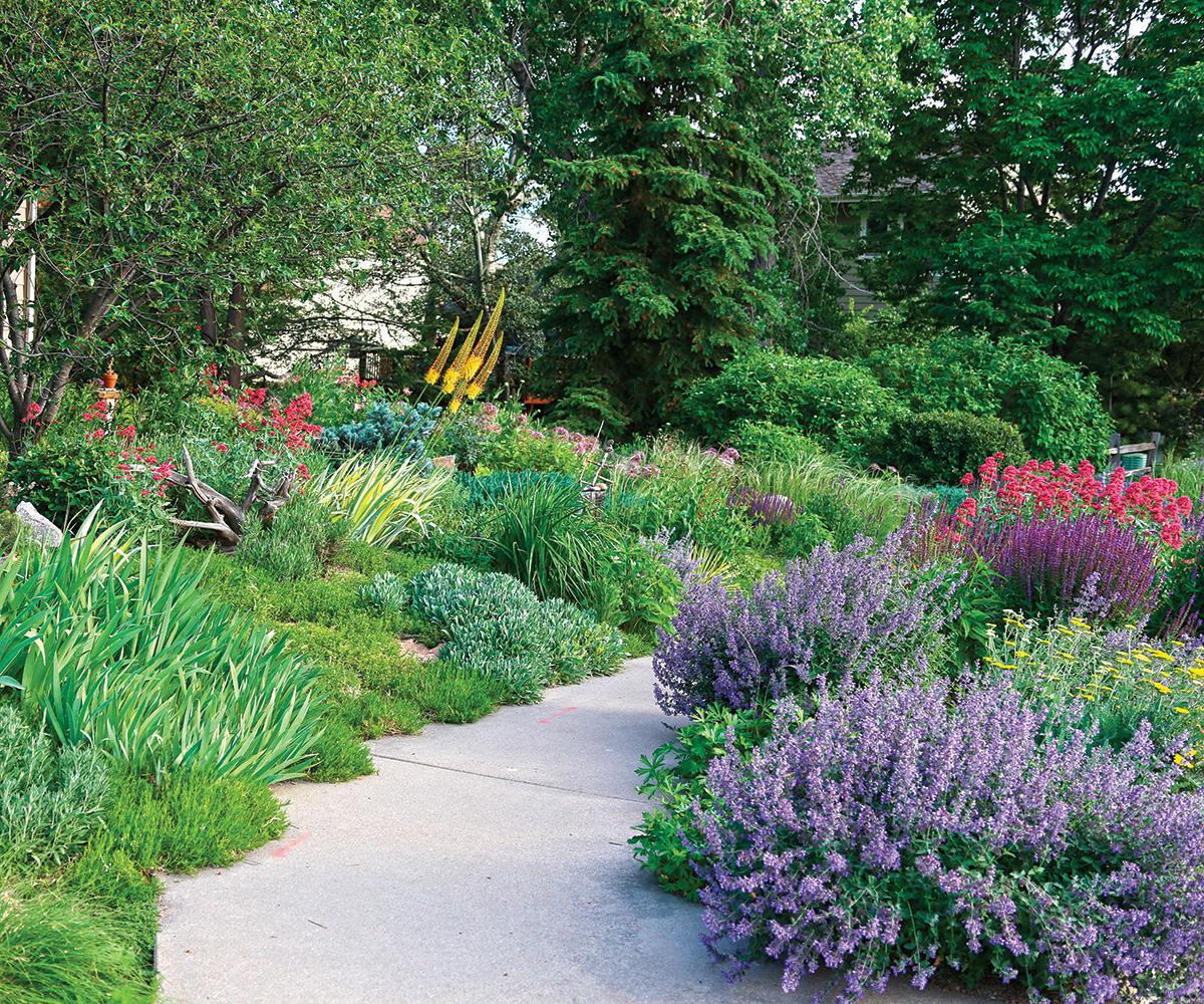 lush gardens on both sides of a sidewalk