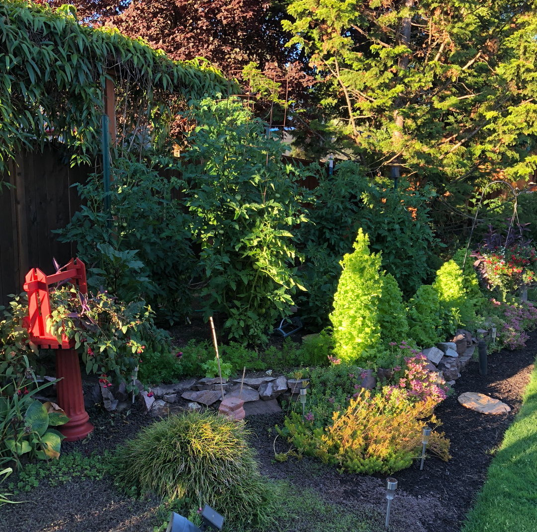 Sharing Plants For A Beautiful Garden Finegardening