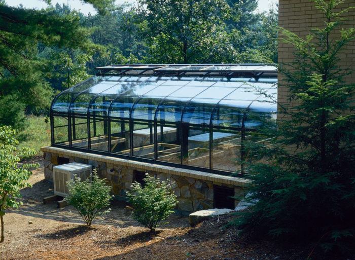 Constructing a Home Greenhouse