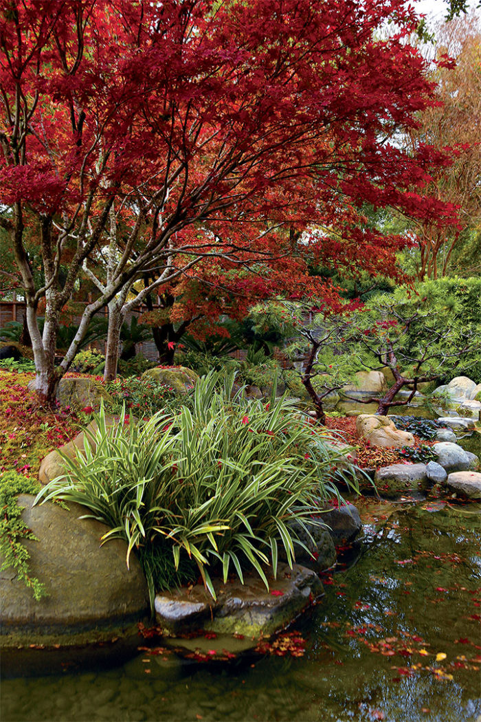 Elements Of A Japanese Garden Finegardening